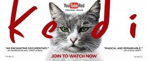 Kedi -- YouTube Red